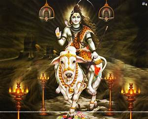 The Pursuit of Bliss: Shivratri (The Great Night of Shiva)