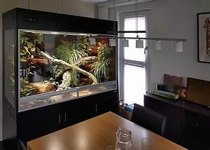 Terrarium Für Pflanzen : terrarium f r schlangen mit seitenfenster und unterschrank ~ Frokenaadalensverden.com Haus und Dekorationen