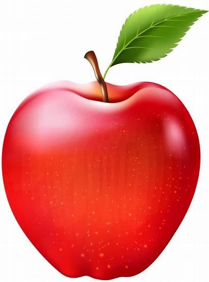 Apple Transparent Clipart Clip Fruit Apples Background
