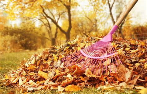 Rasenpflege Im Herbst Vertikutieren by Schutz Vor Schimmel Regelm 228 223 Ig Rechen