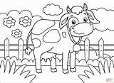 Coloring Cow Pages sketch template