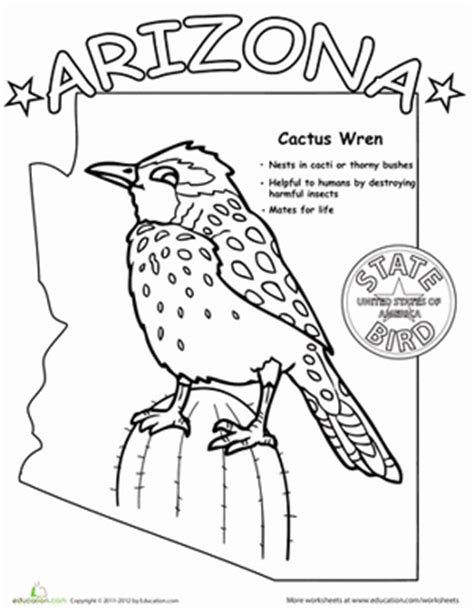 arizona state bird worksheet education 743 | arizona state bird life science