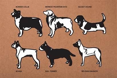 Dog Svg Mega Bundle Cut Breeds Doodles
