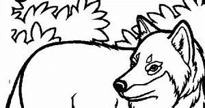 Lobo Para Colorear Y Pintar