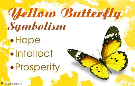 what does the color yellow represent what does a yellow butterfly symbolize you probably don t