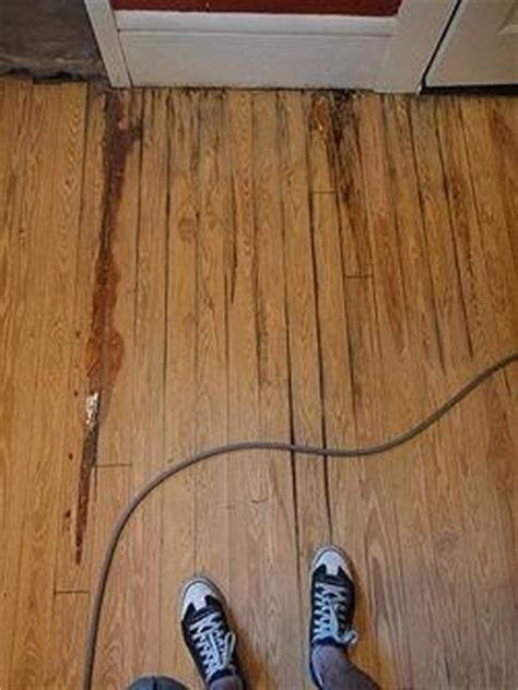 water damaged kitchen floor a step by step guide to repairing a water damaged wood 7013