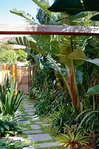 Parasol De Jardin : jard n tropical claves para conseguirlo en casa el blog del decorador ~ Teatrodelosmanantiales.com Idées de Décoration