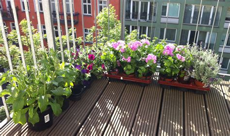 great ideas  balcony gardens design home center news