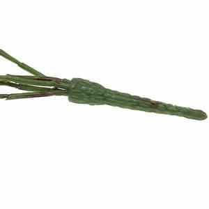 Buchsbaumkugel Künstlich 50cm : efeu k nstlich gr n 50cm kaufen in schweiz ~ A.2002-acura-tl-radio.info Haus und Dekorationen