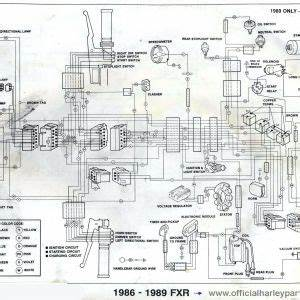 2001 Harley Softail Wiring Diagrams. 2001 harley davidson ... on harley knucklehead wiring diagram, harley flh wiring diagram, harley speedometer wiring diagram, 1999 softail wiring diagram, harley fl wiring diagram, harley sportster wiring diagram, 99 harley wiring diagram, harley softail parts diagram, harley fxr wiring diagram, harley wiring diagram for dummies, harley handlebar wiring diagram, harley coil wiring diagram, harley shovelhead wiring diagram, harley wiring diagram wires, harley wide glide wiring diagram, 2000 harley wiring diagram, simple harley wiring diagram, harley rocker wiring diagram, 99 softail wiring diagram, harley electra glide wiring harness diagram,