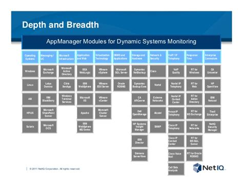 systems resource management  netiq appmanager