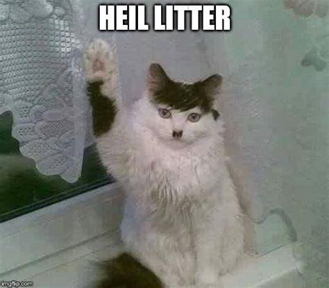 hitler cat imgflip