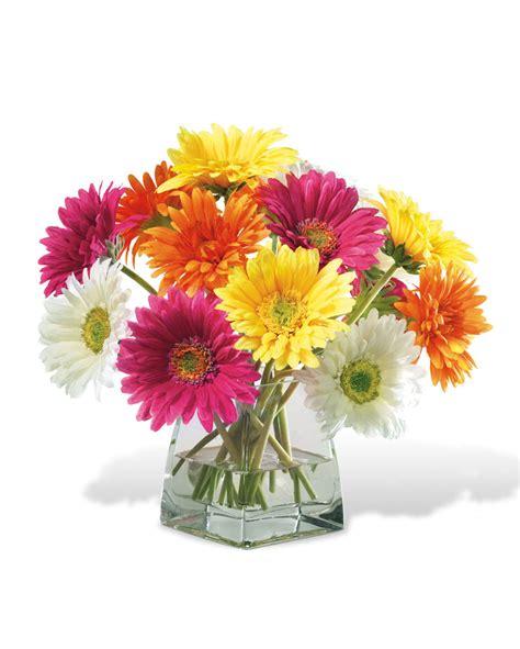 decorate happy  gerbera daisy silk flower centerpiece