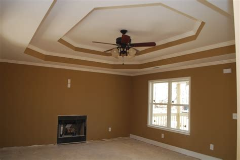 step tray ceiling the color of the living room is