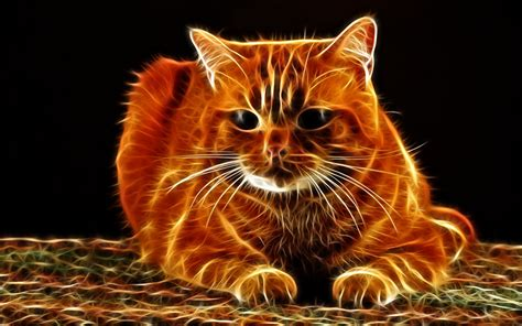 3d Hd Wallpapers Animals by Picture Cat 3d Graphics Whiskers Snout Animal Staring