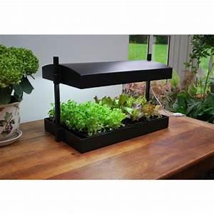 Serre D Intérieur : serre d 39 int rieur avec lampes spectre complet plantes et jardins ~ Preciouscoupons.com Idées de Décoration