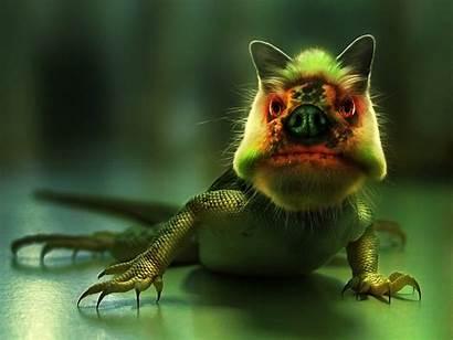 Ugly Desktop Wallpapers Backgrounds 3d Creatures Wallpapersafari