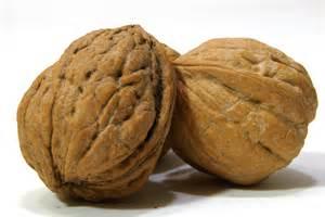 Black Walnuts Health Benefits
