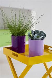 Pflegeleichte Pflanzen Für Die Wohnung : sch ne zimmerpflanzen so dekorieren sie ihr zuhause mit ~ Michelbontemps.com Haus und Dekorationen