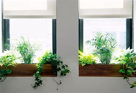 Indoor Window Garden by Haws Mini Heirloom Watering Can Ja Project Selects