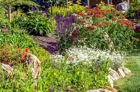 green landscape design portfolio of our work keep it green landscape design crested butte s best landscaping