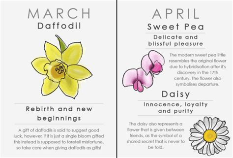 whats  birth flower makeup tips  fashion