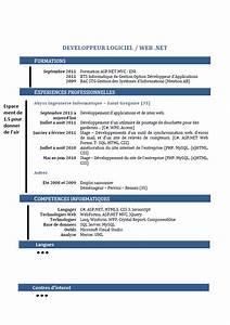 Exemple De Cv Consultant En Informatique Decisionnelle