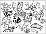 Insects Coloring Pages Printable Worksheets Children Worksheet Bug Preschool Insect Colouring Bugs Sheets Colour Drawing Activity Kindergarten Animals Toddler Learning sketch template