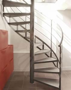Escalier Métallique Industriel : escalier h lico dal m tallique au style industriel spir 39 d co caisson marches caisson pour ~ Melissatoandfro.com Idées de Décoration