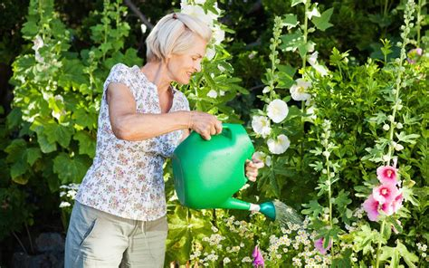 gardening garden woman watering mature why living