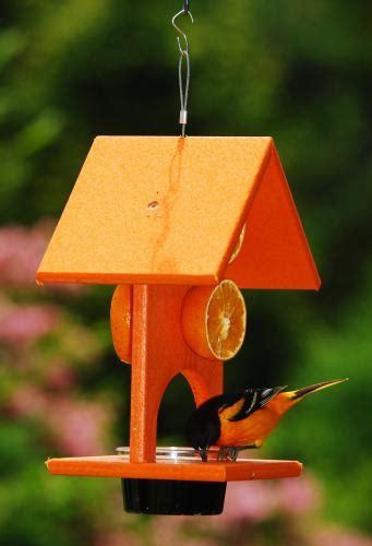 songbird essentials fruit jelly oriole bird feeder