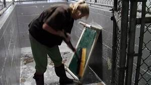 Cleaning Demo Dog Kennel