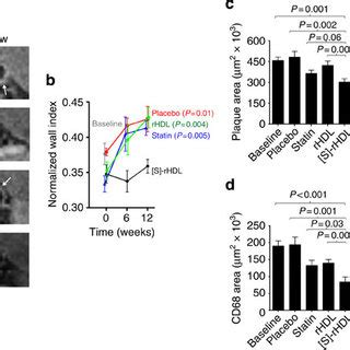 pdf a statin loaded reconstituted high density lipoprotein nanoparticle inhibits