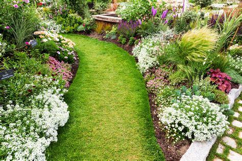 green giant gardens landscape gardening christchurch