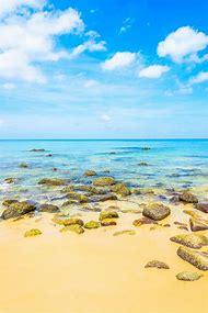 Sea Tropical Beach