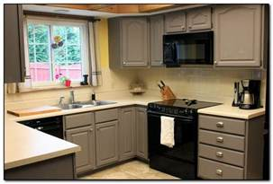 ideas for kitchen cabinet colors painted kitchen cabinet colors ideas monsterlune