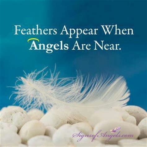 feathers   angels   quotespicturescom