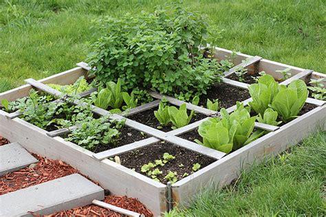 Gardening For Beginners by Bunny Gardening For Beginners