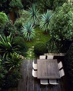 les 25 meilleures idees de la categorie piscine tropicale With idee deco de jardin exterieur 4 plantes exotiques pour jardin et terrasse en vente chez