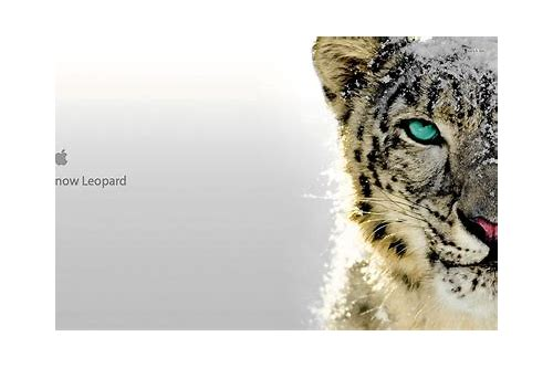 download frostwire for mac snow leopard