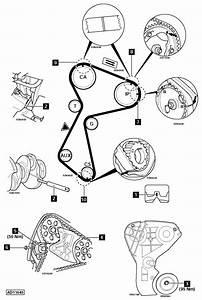 Renault Clio Dynamique Wiring Diagram