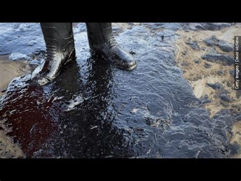 Photos of Santa Barbara Oil Spill