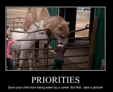 Demotivational Memes - demotivational memes for the real world 22 pics