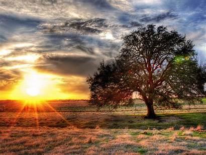 Sun Wallpapers Desktop Sunshine Backgrounds Nature Happy