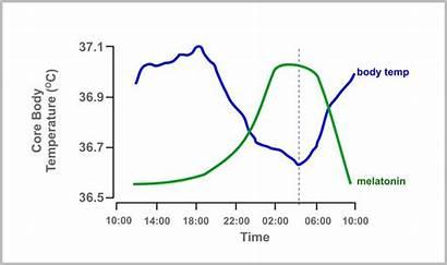 Sleep Temperature Melatonin Chart Common Hormone Affect