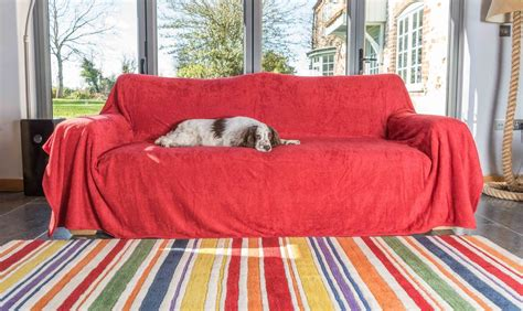 Cotton Towelling Sofa Throw By The Ruff And Tumble Dog Argos Sofas Leather Corner 2 Seater Sofa Bed Auckland Children S Flip Canada Redfield Motion Next Garda Chaise Lounge Upholstery Fabric In Bangalore Cushion Refill Bristol