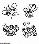Coloring Flying Insects Bugs Spiders Four sketch template