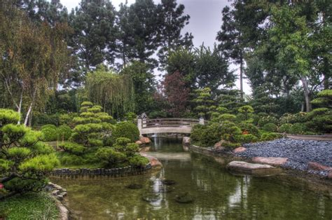 panoramio photo of earl burns miller japanese garden
