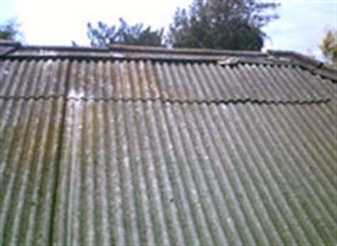 asbestos asbestos testing