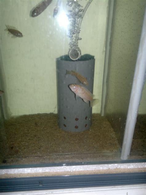filtre exhausteur maison un probl 232 me avec votre aquarium